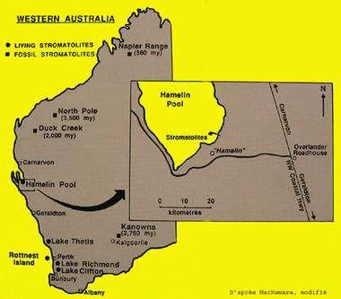 Carte de l'ouest de l'Australie : Shark Bay. © DR