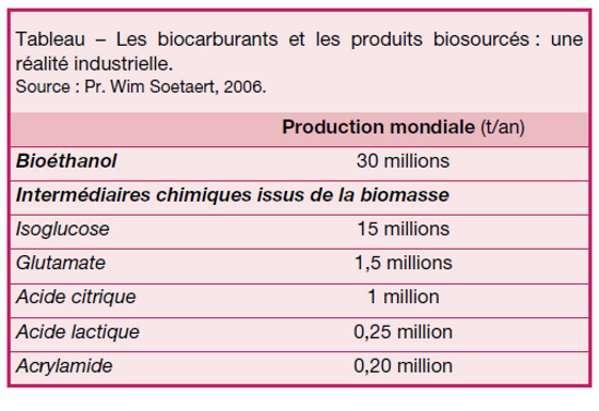 Production mondiale en tonne par an de biocarburants et produits biosourcés en 2006. © Wim Soetaert, 2006