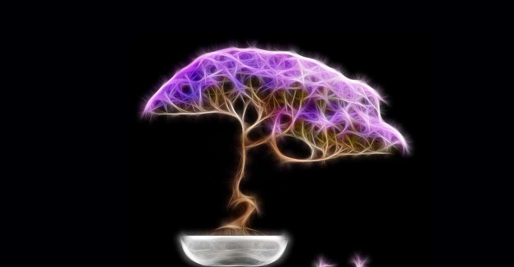 Que sont les L-systèmes ? Ici, un bonsaï fractal. © Digital Storm, Shutterstock