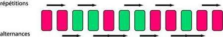 Illustration de ce qu'est une alternance. Dans la série de pastilles fuchsia et vertes, on compte 5 répétitions et 6 alternances.
