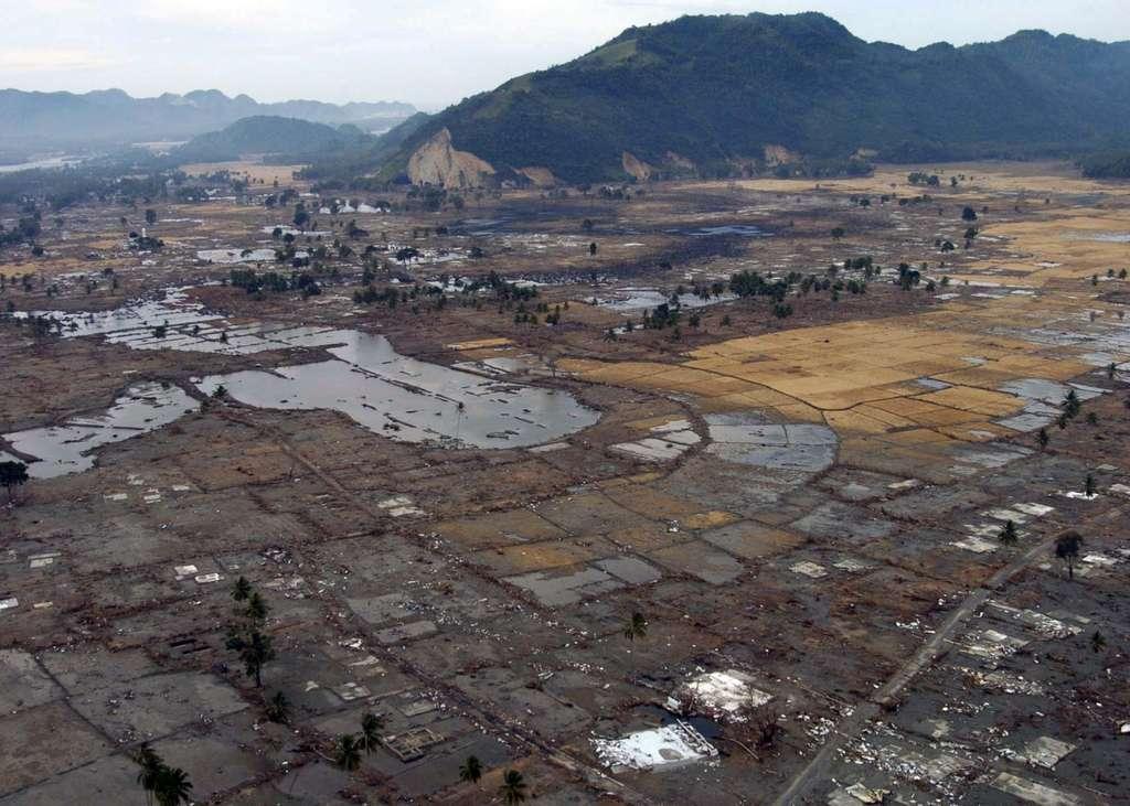 Village détruit par le tsunami