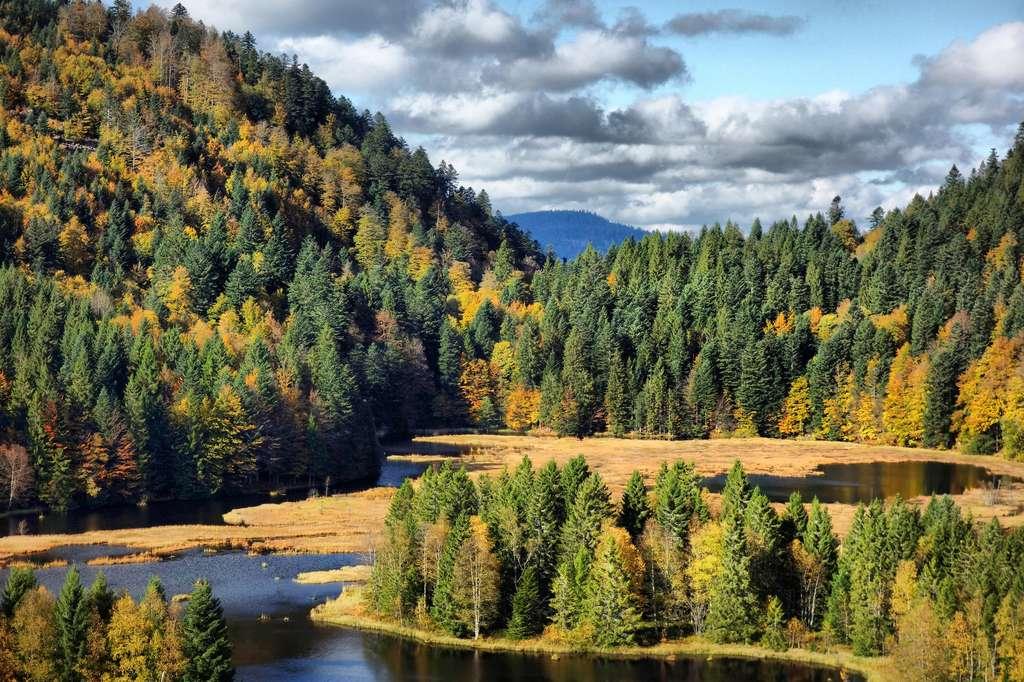 Le lac de Lispach en Alsace comme au Canada. © Denis Martin, Flickr
