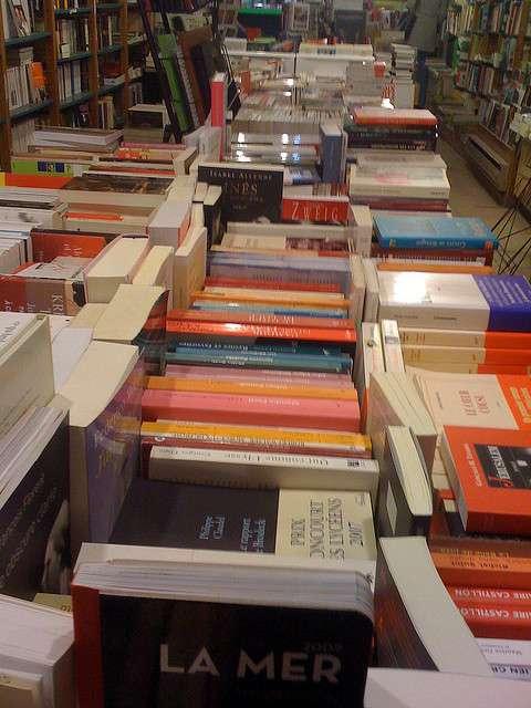 De la fabrication du papier à sa livraison en librairie, quel impact écologique engendre le cycle de vie d'un livre ? © endirectdesiles, Flickr nc-sa 2.0
