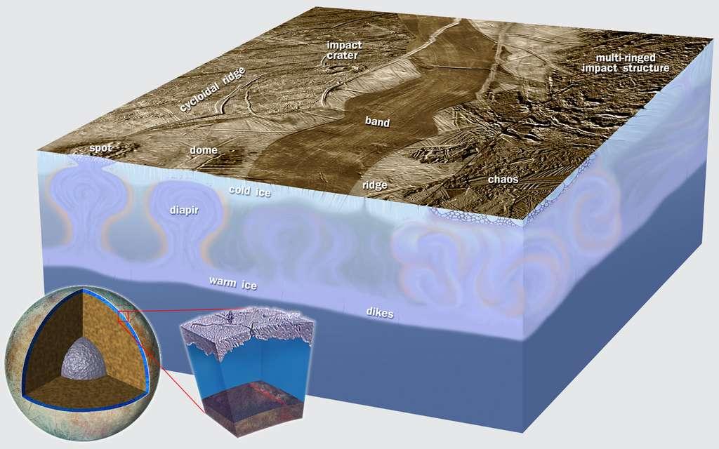 Une vue d'artiste en coupe de la banquise d'Europe. Des diapirs de glace salés sont en train de remonter sous une région des terrains chaotiques d'Europe. © Nasa, JPL-Caltech