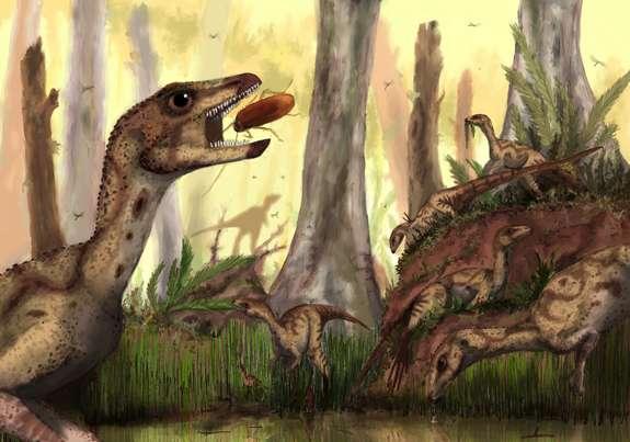 Laquintasaura venezuelae devait pouvoir se nourrir d'insectes et peut-être aussi de petites proies bien que son régime alimentaire était probablement herbivore. © Mark Witton