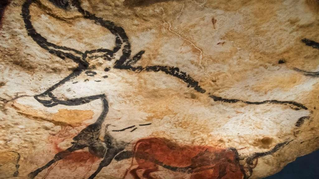 Un des Aurochs dans la grotte de Lascaux