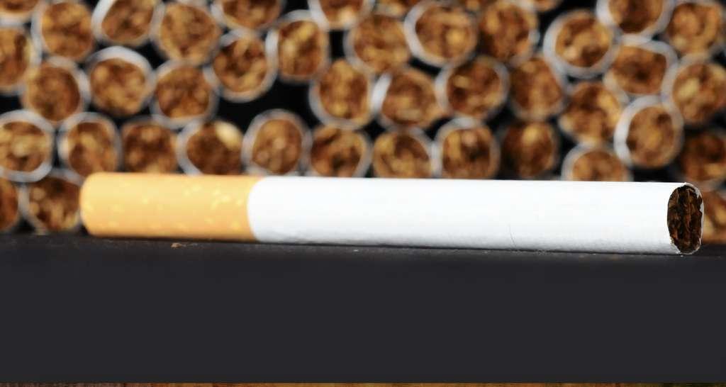 Stopper le tabac. © Underworld, Shutterstock