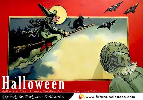 Halloween, sorcière et chauve-souris