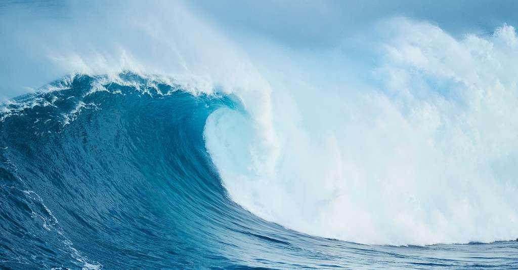 Les tsunamis peuvent être les conséquences d'un tremblement de terre. © EpicStockMedia, Fotolia