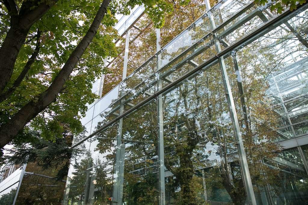 Achevé en 1994, le bâtiment de Jean Nouvel pour la fondation Cartier pour l'art contemporain symbolise la richesse et l'ambiguïté spatiale que permet la superposition de couches de verre transparent. © Wsifrancis, CC by-nc 2.0