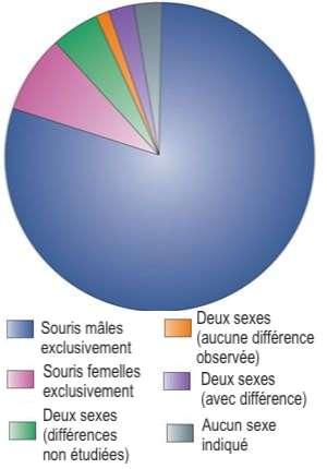 79 % des expériences publiées entre 1996 et 2005, et portant sur la douleur chez la souris, sont menées chez des individus mâles. © Céline Deluzarche, Futura, d'après Jeffrey S. Mogil, Nature Reviews Neuroscience, 2012