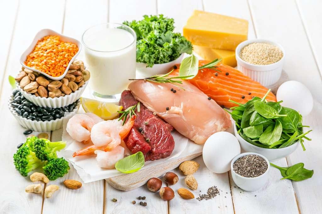 Les protéines animales sont mieux digérées et mieux assimilées que les protéines végétales. © anaumenko, Adobe Stock
