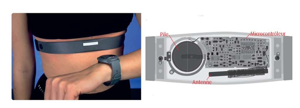 Cardiofréquencemètre sans fil (à gauche) et schéma de la ceinture d'un cardiofréquencemètre (à droite). On distingue le microcontrôleur, la pile et l'antenne pour la transmission du signal (la bobine en bas à droite). © Belin