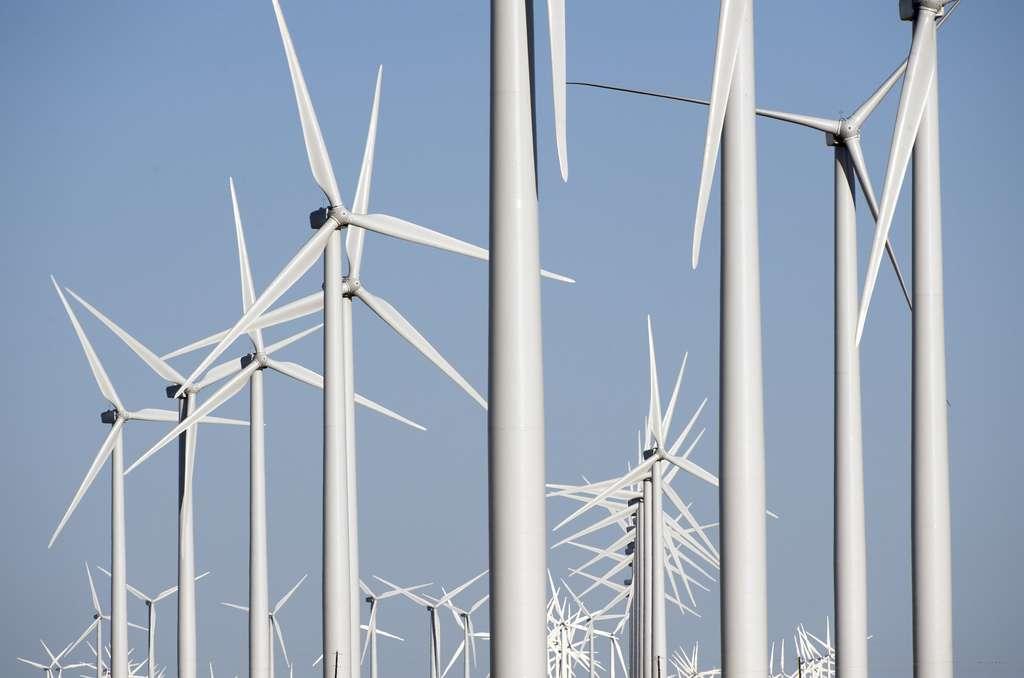 La région d'Horse Hollow, au Texas, abrite à elle seule 421 éoliennes sur une surface de 190 km². La capacité électrique de ces installations est de 735,5 mégawatts. © danishwindindustryassociation, Flickr, CC by-nc 2.0