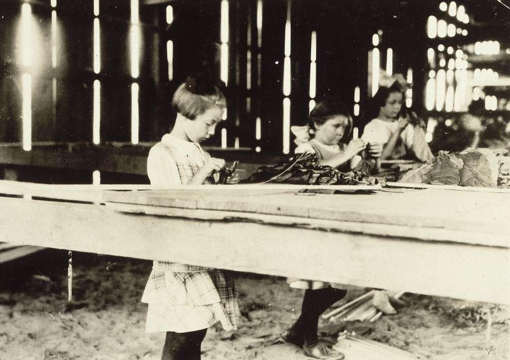 Enfants travaillant dans une manufacture de tabac, USA ; photo Lewis Hine, début XXe siècle. Musée d'Orsay, Paris. © RMN - Grand Palais / J.G. Berizzi / Lewis Hine.