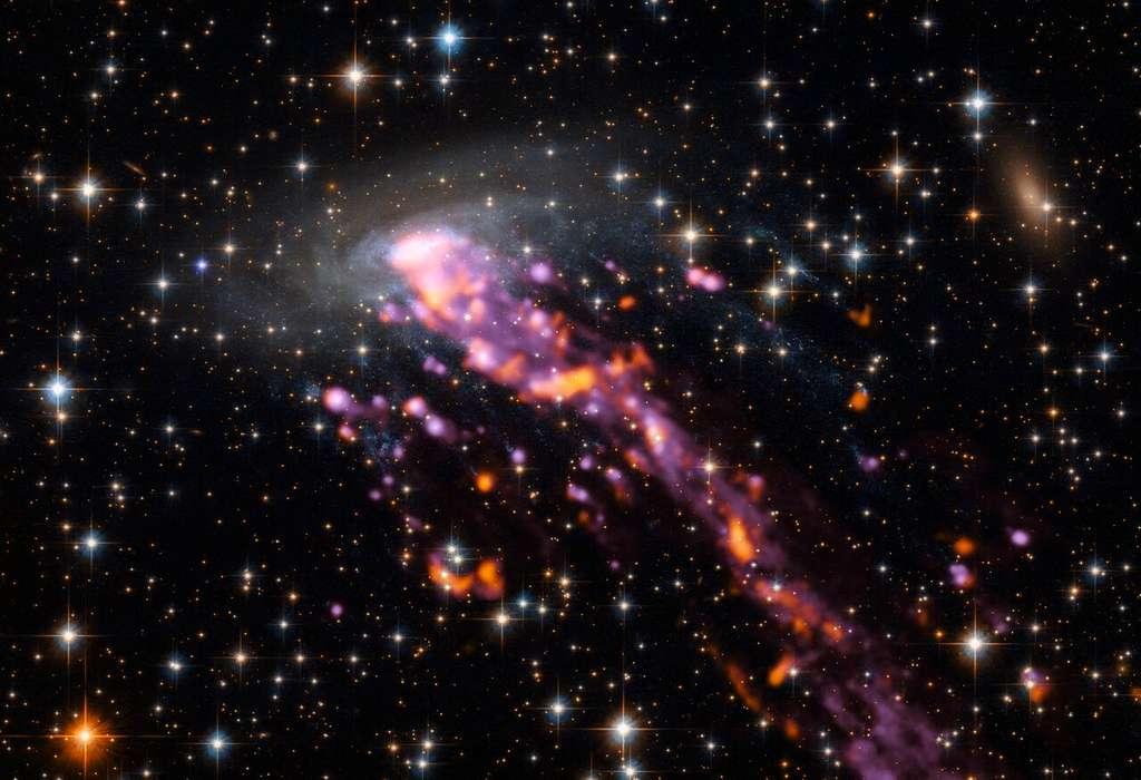 La méduse cosmique est représentée ici avec de superbes détails. La galaxie spirale qui compose la tête a été imagée par le télescope spatial Hubble (Nasa/ESA). La queue, constituée de filaments d'hydrogène, est représentée ici par le gaz ionisé cartographié avec Muse en rose-violet et par le gaz moléculaire (émission de CO) cartographié avec Alma en rouge-orangé. © ESO