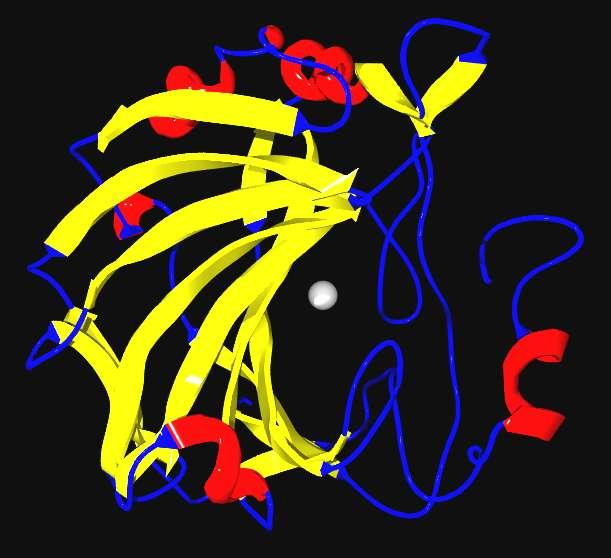 L'anhydrase carbonique — cette enzyme qui aide à réguler le pH du sang humain — pourrait être une clé de la séquestration du CO2 dans les océans. © Labrador2, Wikipédia, DP