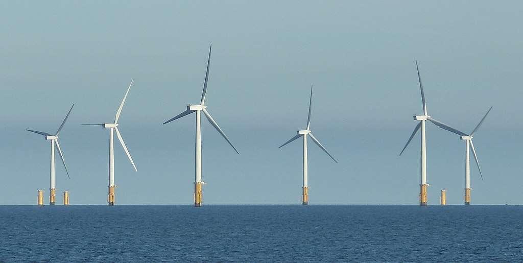 Parc éolien en mer : pourquoi n'y a-t-il pas de parc aquacole ? © Rob Farrow, Wikimedia commons, CC 2.0