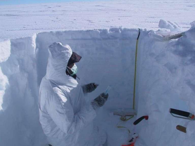 Collecte d'échantillons de neige de surface