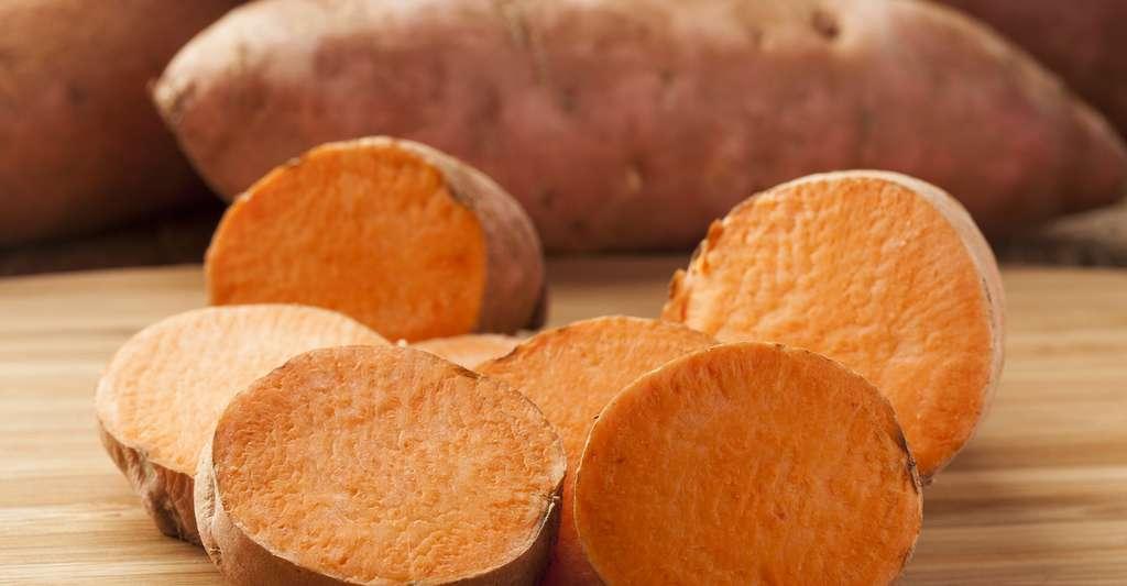 La patate douce est très présente dans les régions tropicales. © Brent Hofacker, Shutterstock