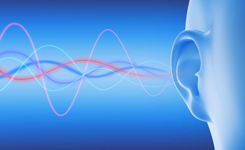 Les voix graves émettent des sons de fréquence plus basse que les voix aiguës. © peterschreiber.media, Fotolia