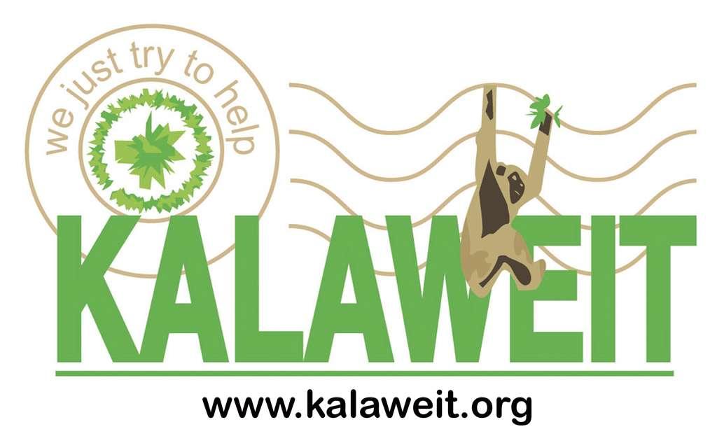 Créée en 1997, l'association est désormais mondialement connue. © Kalaweit