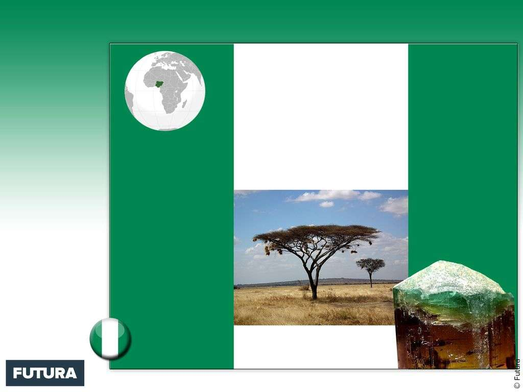 Drapeau : Nigeria