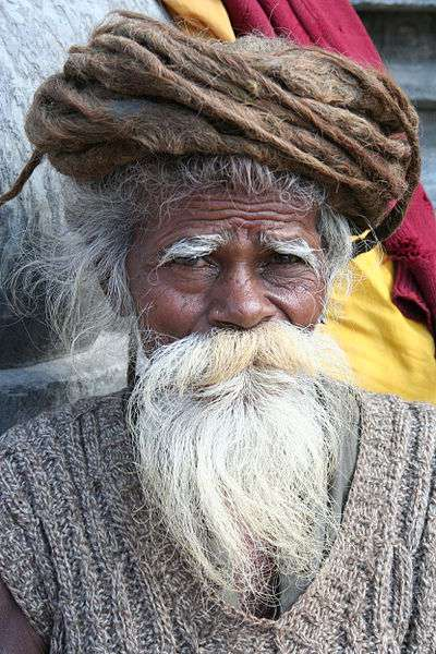 L'homme possède jusqu'à 500 poils de barbe par cm2. La femme, ça ne se voit pas (ou très rarement), en possède malgré tout une centaine, mais très courts. © Wen-Yan King, Wikipédia, cc by 2.0