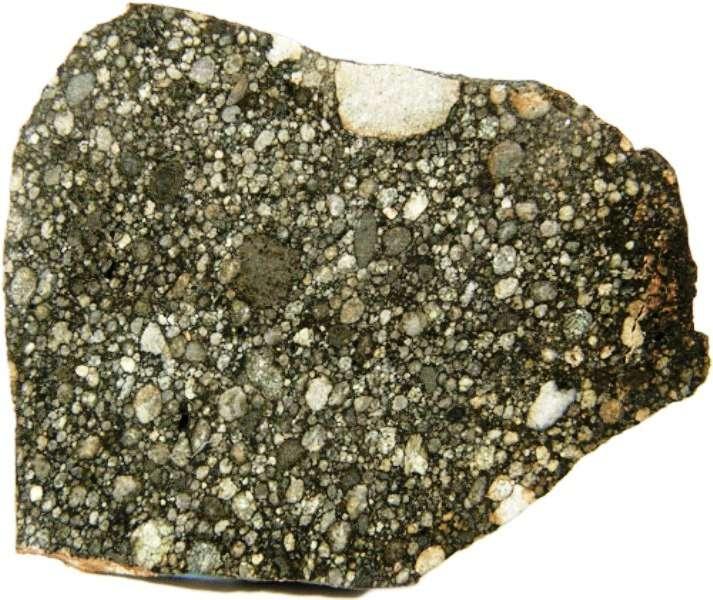 Northwest Afrika 5507 (NWA 5507), une chondrite ordinaire primitive trouvée au Maroc en 2008. © Meteorites Australia Collection