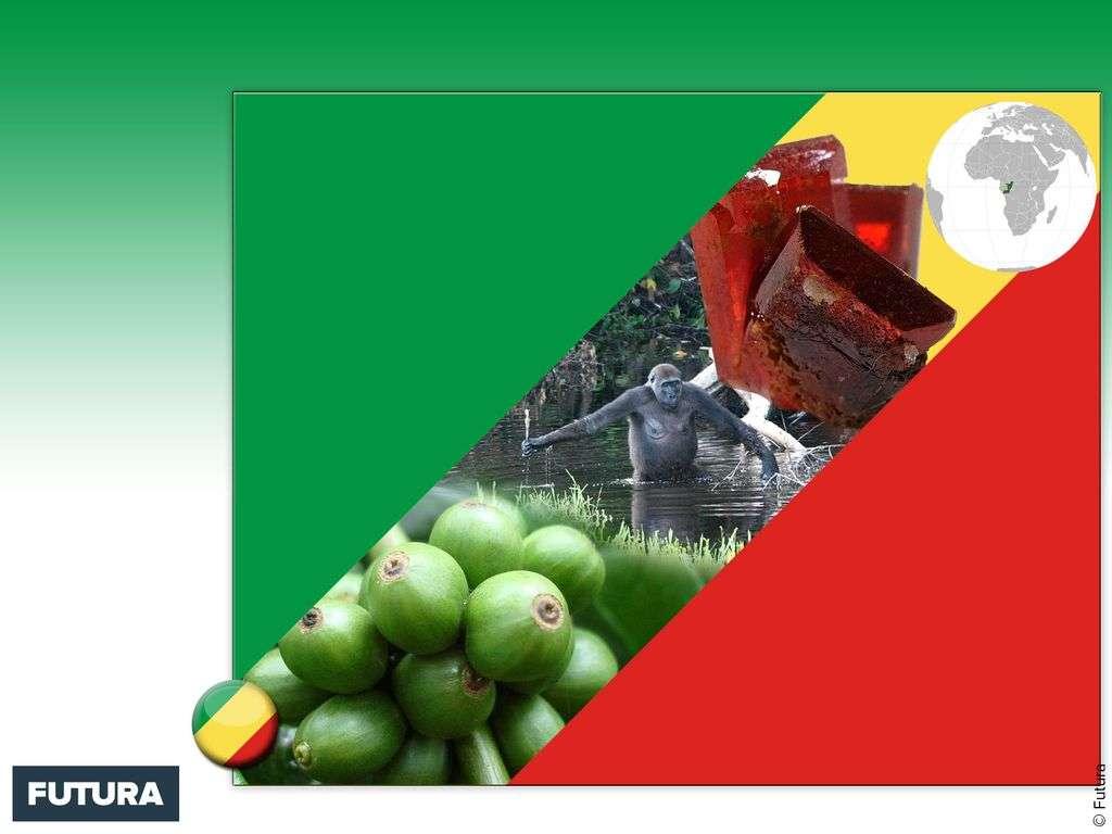 Drapeau : Congo-Brazzaville