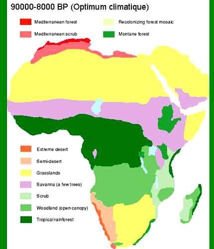 http://www.esd.ornl.gov/projects/qen/nercAFRICA.html © Tous droits de reproduction réservés