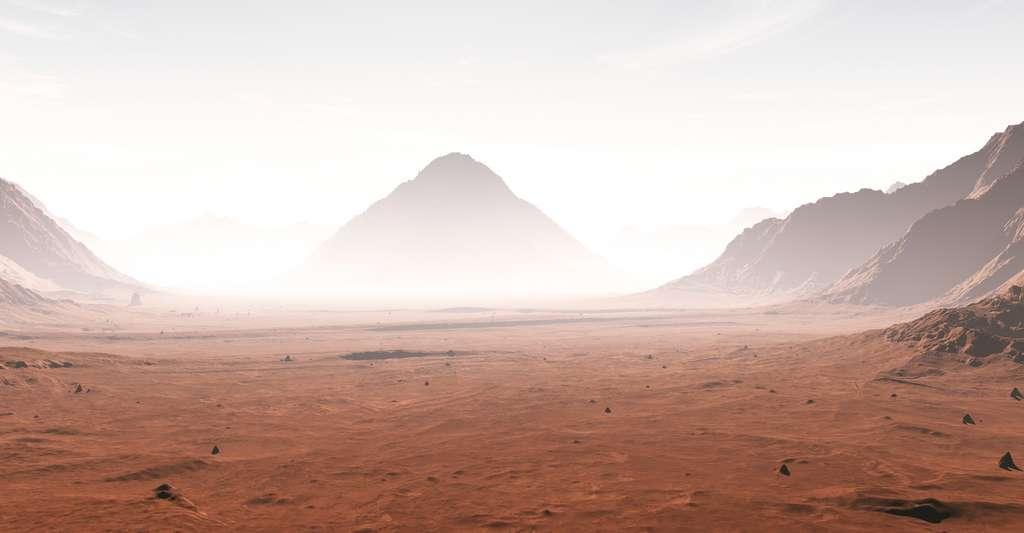 Sur Mars, le taux d'érosion serait comparable, dans certains cas, à celui des champs de dunes froides et arides sur Terre. © Peter Jurik, Fotolia