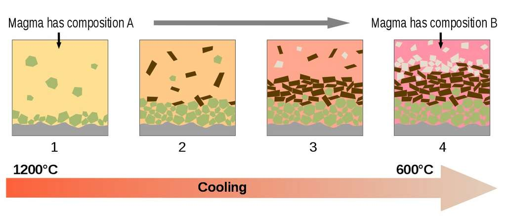 Diagramme schématique montrant les principes de la cristallisation fractionnée au sein d'un réservoir magmatique. Alors que la température décroît, la composition du magma évolue au fur et à mesure de la cristallisation des différents minéraux. © Woudloper, Wikimedia Commons, CC by-sa 3.0