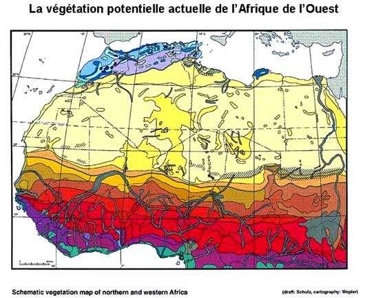 http://www.geographie.uni-wuerzburg.de/institut/pal_atlas_afrika/index_atlas.htm © Tous droits de reproduction réservés