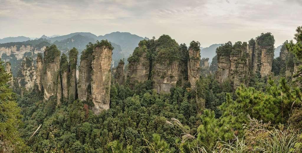Panorama des Cinq doigts, piliers de grès quartzite dans le Wulingyuan, province du Hunan, en Chine. © Chensiyuan, Wikimedia commons, CC by-sa 4.0