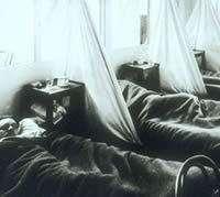 A la fin de 1918, les premiers cas d'une grippe particulière sont signalés en en Chine. Une variante mortelle apparaît aux Etats-Unis et passe en Europe avec les troupes américaines. L'ampleur de l'épidémie est d'abord publiquement mise en évidence en Espagne, d'où le surnom de grippe espagnole. La maladie se répand à une vitesse stupéfiante, touchant environ un milliard de personnes, soit la moitié de la population mondiale, et provoque la mort chez près de 3 % des malades. Le total des victimes varie beaucoup selon les estimations, la plupart donnant actuellement une fourchette de 30 à 50 millions. Crédit : Natural Museum of Health and Medicine