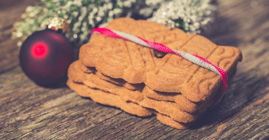 La vergeoise est un sucre roux produit à partir de betterave et qui est utilisé, entre autres, en pâtisserie, ici pour la préparation de spéculoos. © R_Szatkowski, Shutterstock
