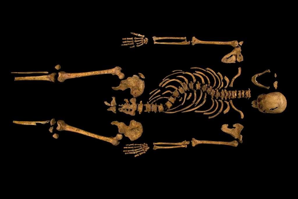 Le squelette de Richard III, ici en photographie, montre qu'il souffrait de scoliose. © University of Leicester