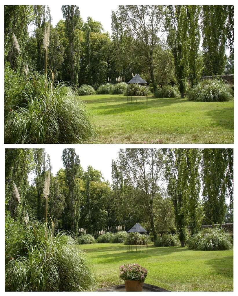 L'image initiale se trouve en haut ; en bas, on peut voir l'image modifiée. © J.-P. Louvet