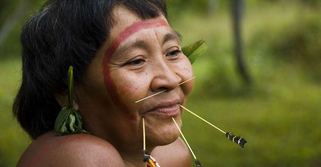 Femme Yanomami, en Amérique du Sud. © Fiona Watson, Survival