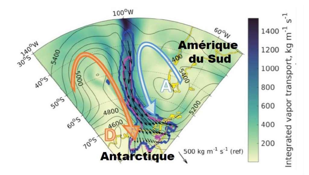 Les contours violet et bleu montrent les limites au 25 mai d'une rivière atmosphérique ayant contribué à l'événement de fonte du 25 au 30 mai 2016. Les flèches noires représentent le transport de vapeur d'eau au cœur de la rivière. Les grandes flèches montrent le sens de rotation des masses d'air autour du centre dépressionnaire (D) et de l'anticyclone (A). © CNRS