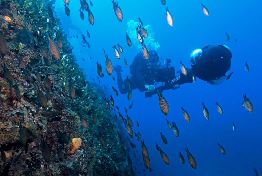 Pour la première fois en Europe, les membres du Catlin Seaview Survey ont effectué des prises de vue non loin du musée de Monaco. On voit ici Christophe Bailhache avec la toute dernière version de l'appareil de prise de vue, le SVII-S. © Catlin Seaview Survey, Richard Vevers