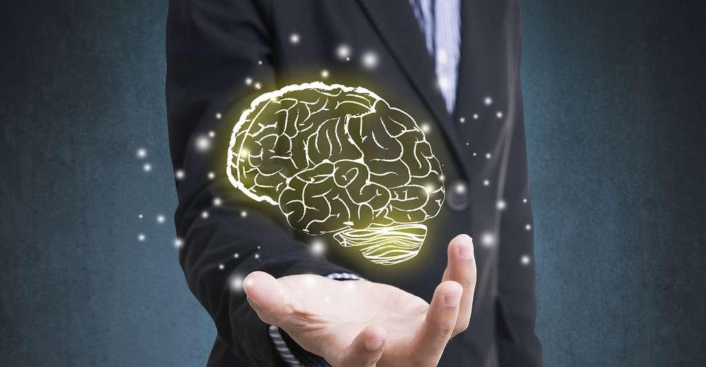 Vieillessement cérébral. © This Is Me - Shutterstock