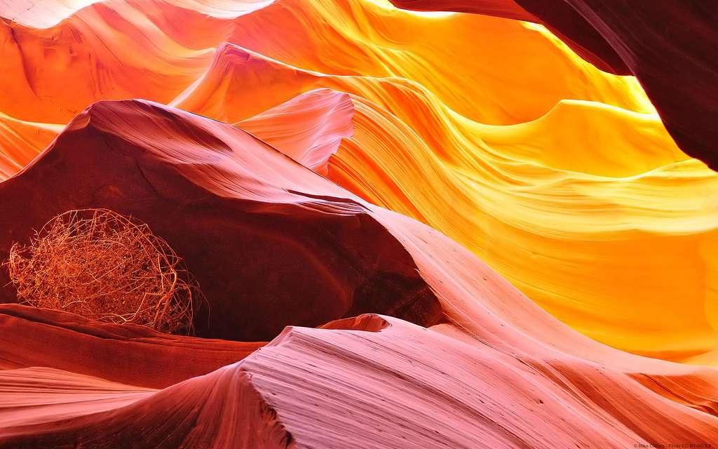 Le canyon de l'Antilope et ses couleurs étincelantes
