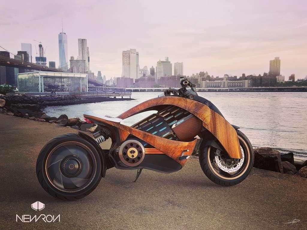 Une puissance de 100 ch pour une autonomie de 300 kilomètres. © Newron Motors