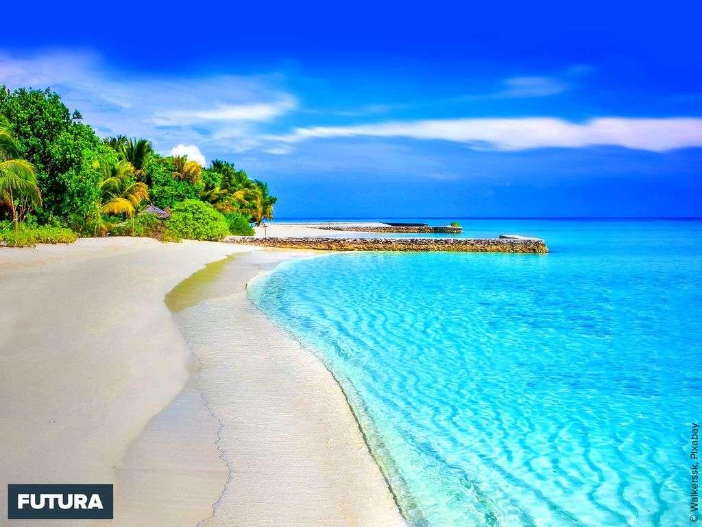 Sublime plage de rêve aux Seychelles