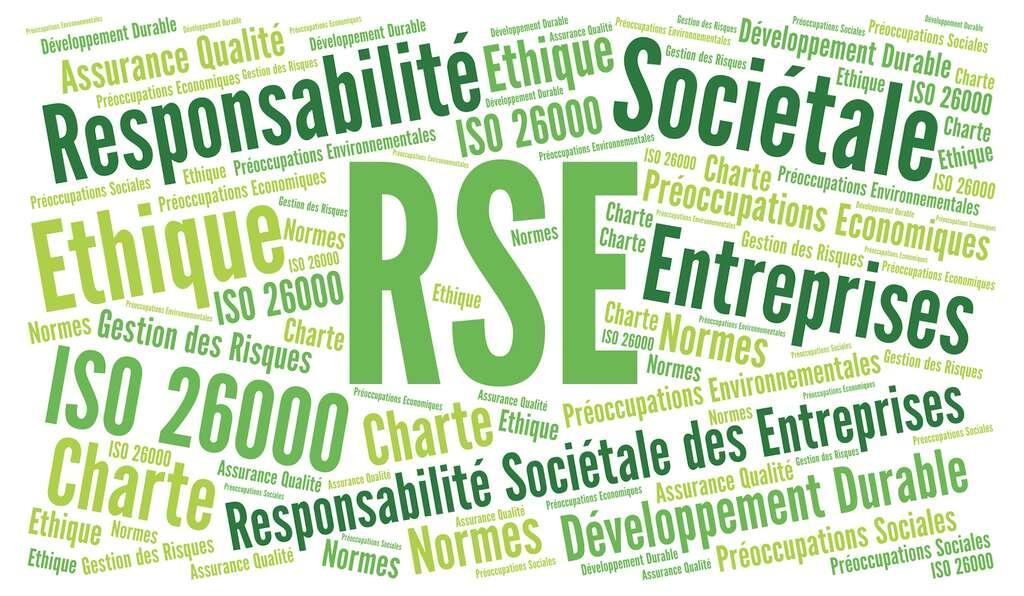 Au sein de l'entreprise, c'est le concept de Responsabilité Sociale des Entreprises (RSE) qui intègre les enjeux du développement durable. © Ricochet64, Fotolia