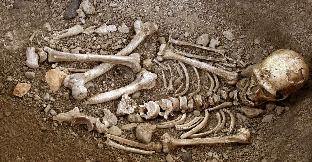 Reconstitution de la sépulture du Néandertalien de La Chapelle-aux-Saints. Musée de La Chapelle-aux-Saints. © 120, V. Mourre, Wikimedia commons, CC by-sa 3.0