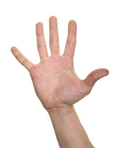 La vigueur ou la mollesse d'une poignée de main permettraient-elles de prédire les risques de crise cardiaque ou d'AVC? © svand, shutterstock.com