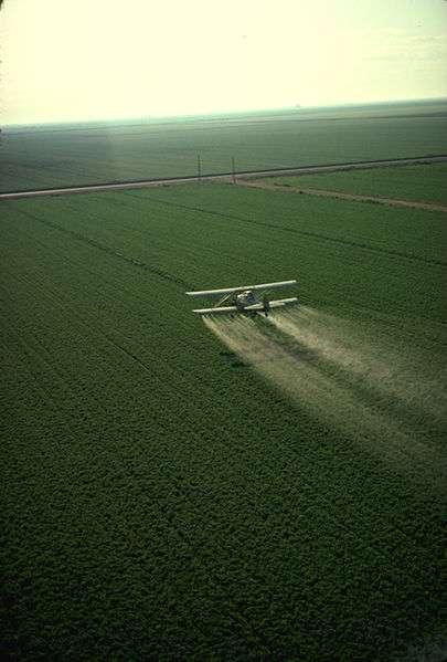 Aux États-Unis, l'épandage de pesticides se fait par avion car la surface des champs est très importante. © USDA, DP